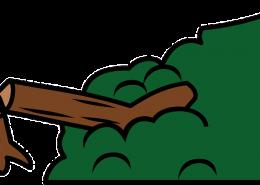 tree-42301_640